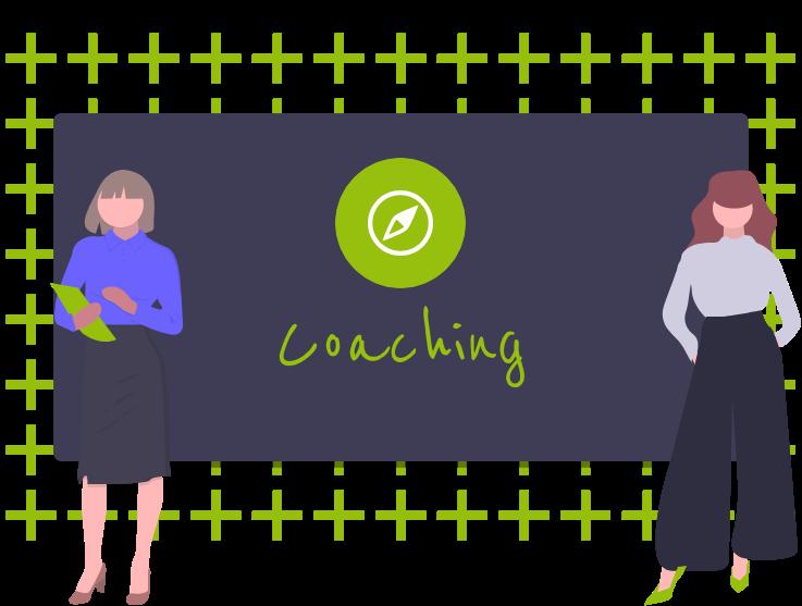 Als erfahrene Coaches bieten wir bedarfsorientierte Coachings an.